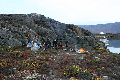 Musk ox barbecue in Scoresby Sund, image by Nanu Travel